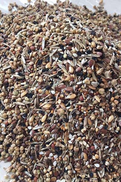Versele Laga Kuşlarınız İçin 22 Çeşit İçeren Yabani Sağlık Tohumu  500 gr