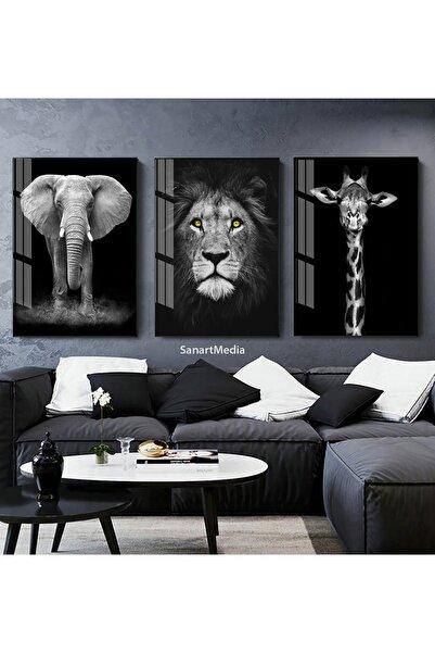 Sanat fotoğraf 3'lü Aslan Fil Zürafa Hayvan Çerçeveli Camlı Tablo Seti Poster Duvar Dekor Salon Oturma Odası