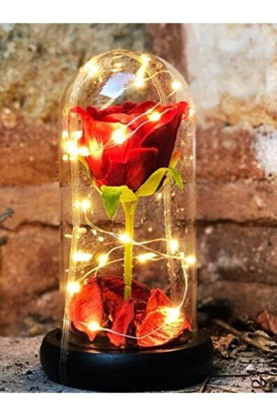 Evim Çiçek Fanus Işıklı Gül