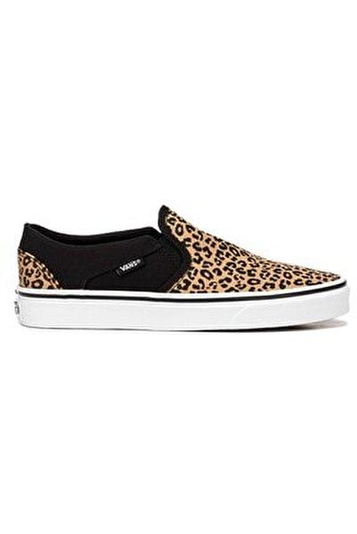 WM ASHER Siyah Kadın Sneaker Ayakkabı 101096580