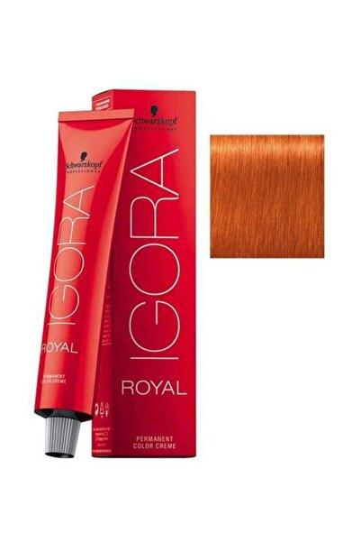Igora Royal 8-77 Açık Kumral-yoğun Bakır