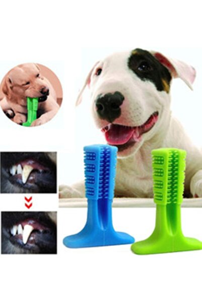 dnzstores Köpek Diş Temizleyici Ve Kaşıyıcı Sağlıklı Küçük Boy Oyuncak