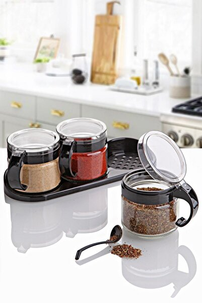 Kitchen Life Lüx 3'lü Standlı Kaşıklı Desire Series Baharatlık Seti