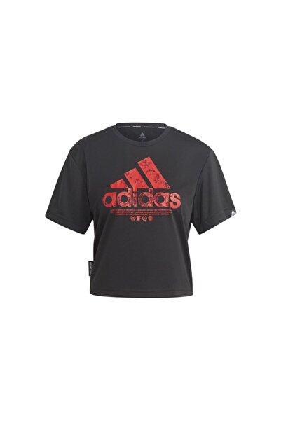 adidas Kadın Siyah W Sust G Cro T-Shirt Gl6842