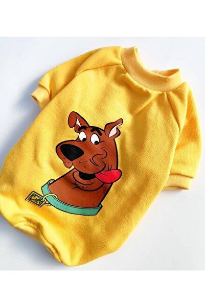 PATİBÖR Scooby-doo Sweat