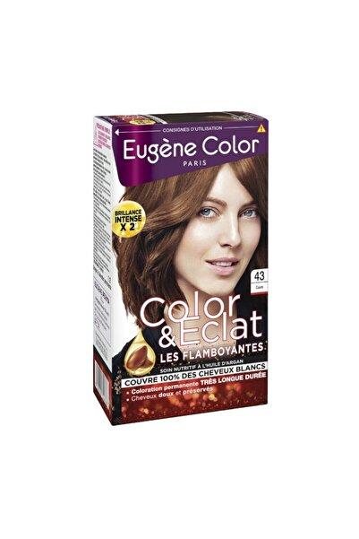 Eugene color Color & Eclat Parlak Saçlar 43 Cuivre