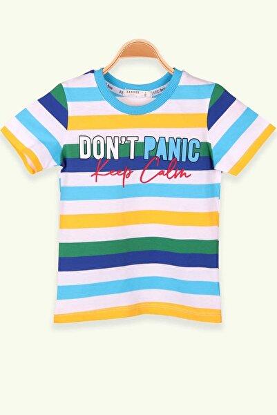 Breeze Erkek Çocuk Tişört Baskılı Çizgili Karışık Renk (2-6 Yaş)