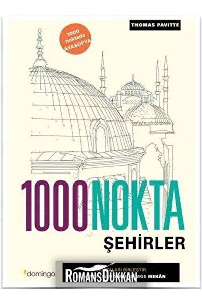 Flexbooks Yayınları 1000 Nokta-şehirler