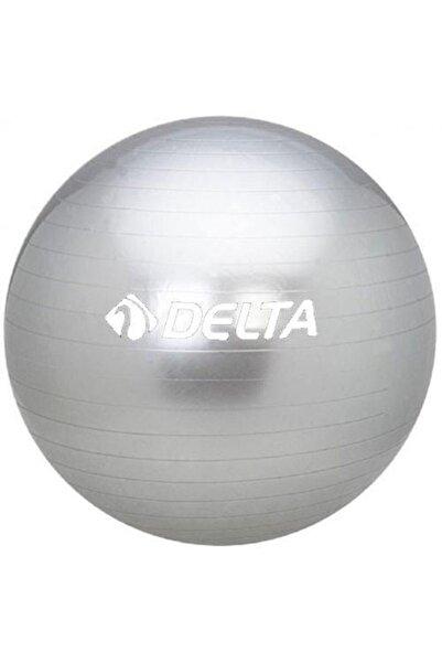 Delta 55 Cm Dura-strong Deluxe Silver Pilates Topu