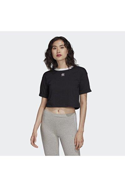 adidas Kadın Siyah Crop Top Tişört