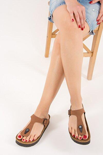 Fox Shoes Kadın Taba Terlik B777731002