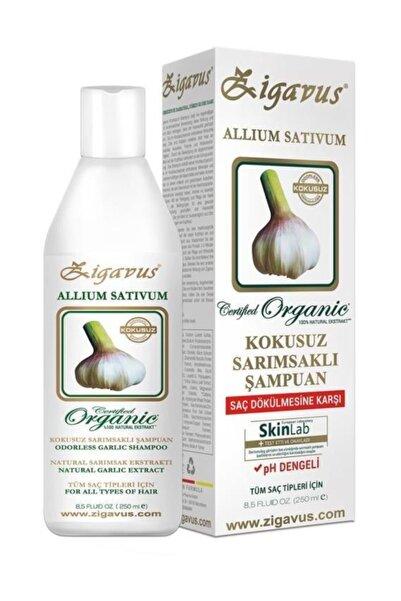 Zigavus Sarımsaklı Şampuan 250 Ml 8699349139964