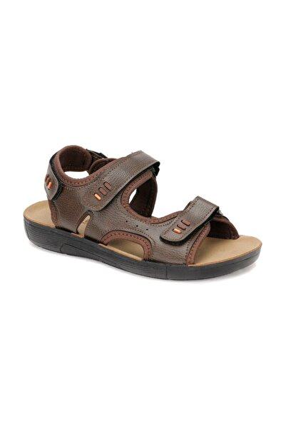 PANAMA CLUB Erkek Kahverengi Sandalet