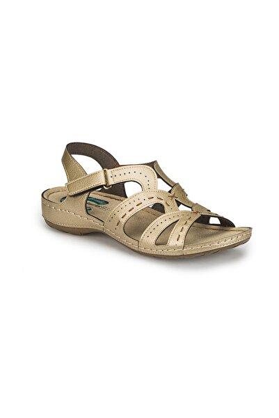 Polaris 81.158540.Z Altın Kadın Basic Comfort 100307481