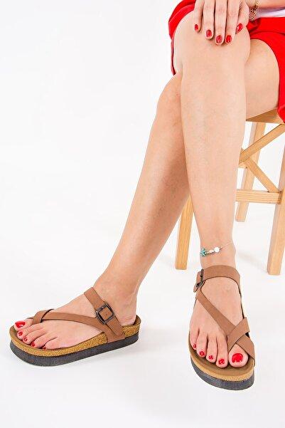Fox Shoes Kadın Kahverengi Taba Terlik B777753002