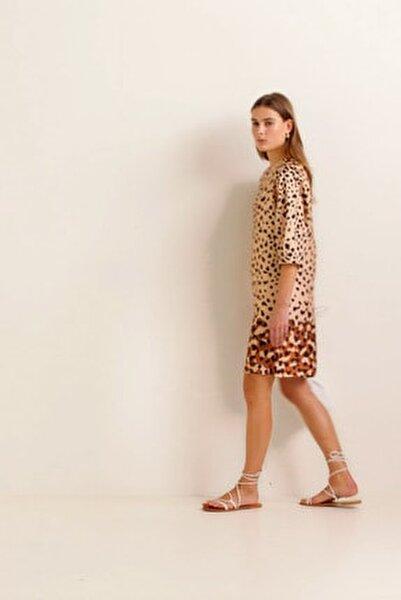 Kadın Kahverengi Elbise 41010934