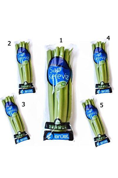 Erüst Tarım Sap Kereviz (Celery) 5 Paket