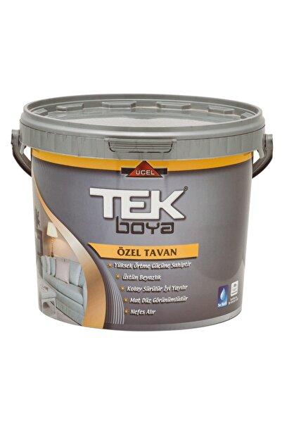 Zirve Tek Tavan Boyası Beyaz 10 kg