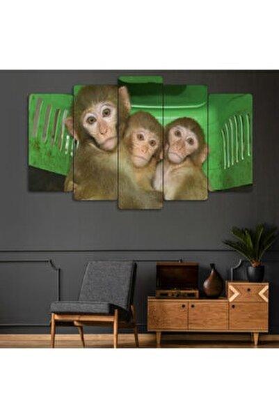 Yeşil 3 Maymun Görmedim Duymadım Bilmiyorum 5 Parçalı Dekoratif Tablo