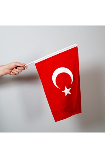 Özgüvenal Türk Bayrağı 20x30 cm Alpaka Kumaş - Sopalı-10 adet