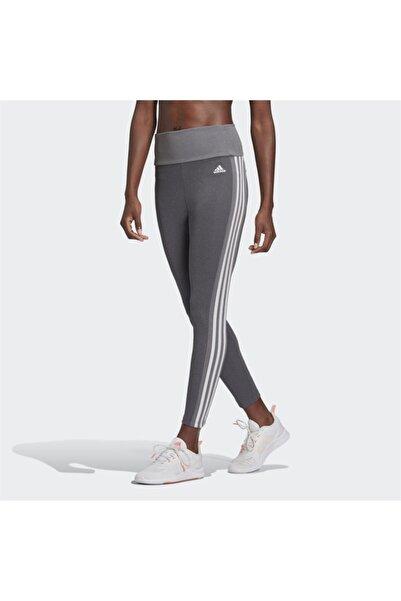 adidas Sport Kadın Tayt
