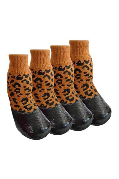 Trixie Kedi Köpek Ayakkabı Çorap Nitril Kaplı Örme Kışlık Çorap Leopar Desen Br20