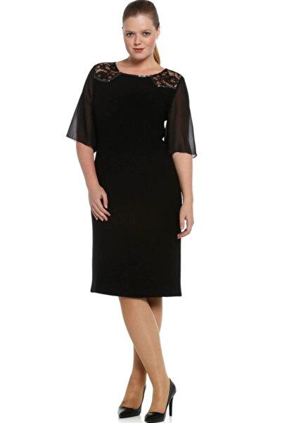 Nidya Moda Büyük Beden Siyah Şifon Kol Omuz Dantel Taşlı Abiye Elbise-4066s