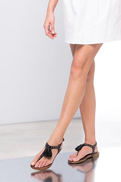 İnci Hakiki Deri Siyah Kadın Sandalet 120120453010