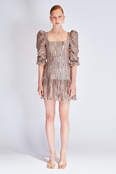 Raisa&Vanessa for Trendyol Çok Renkli Payetli Elbise TDPSS20EL0143