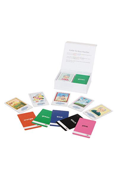 Edukids English Flash Cards /