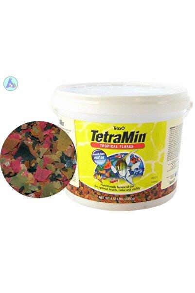 Tetra Min Flakes Pul Balık Yemi 250gr