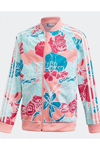adidas Kadın  Pembe Sweatshirt