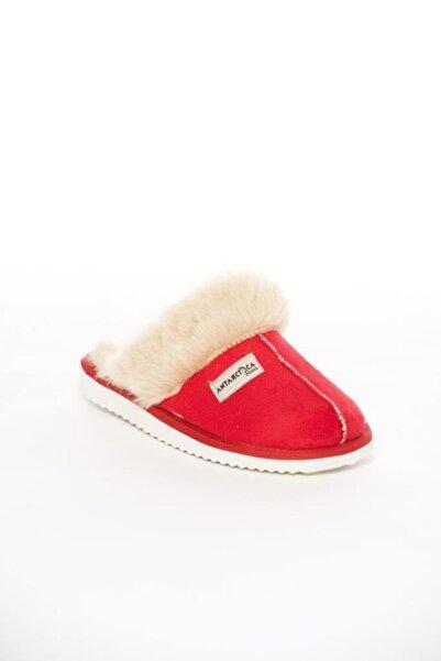 Antarctica Boots Kadın Kırmızı Taban Süet Ev Terliği