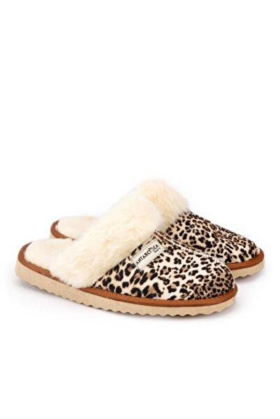 Antarctica Boots Kadın Kahverengi Taban Süet Leopar Ev Terliği
