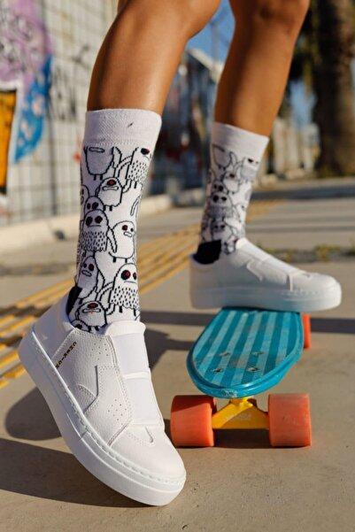 Chekich Kadın Beyaz Ayakkabı Ch033 Bt