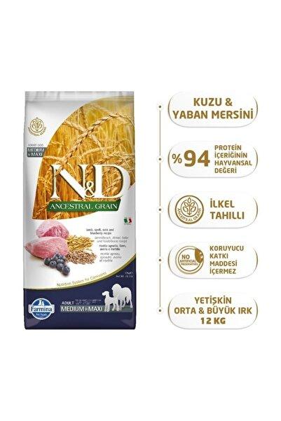 N&D Düşük Tahıllı Kuzu Etli Yaban Mersinli Yetişkin Köpek Maması - 12 kg