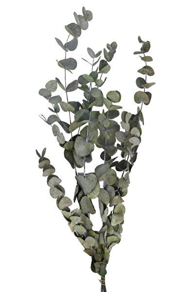 Yapay Çiçek Deposu Şoklanmis Okaliptus Demeti Yeşil(Büyük Demet)