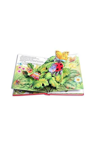 Abc Yayınları Şanslı Uğur Böceği 9786054197286