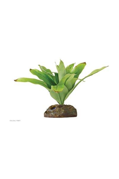 Exo Terra Teraryum İçin Plastik Bitki