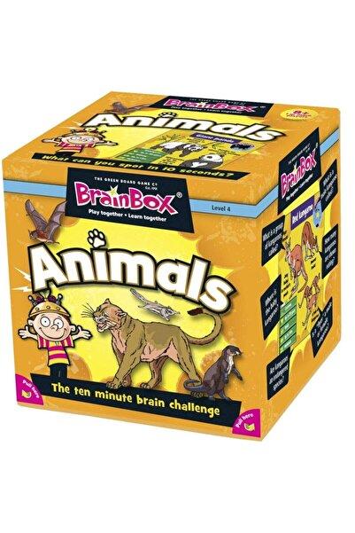 Anne Brainbox Hayvanlar Ingilizce Akıl Ve Zeka Eğitici Oyun Kartları