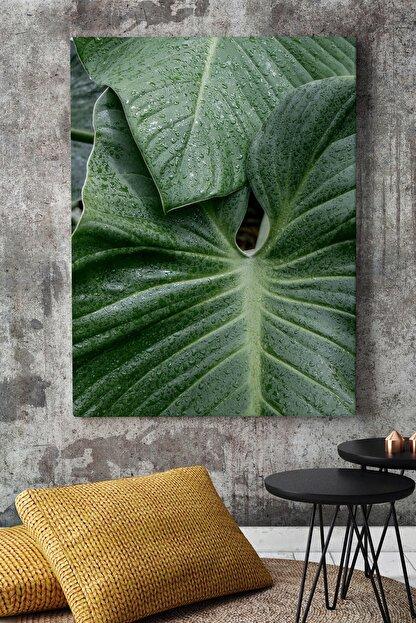 KanvasSepeti Kalın Yapraklı Art Vektörel Soyut Kanvas Canvas Tablo Dekoratif Tablolar