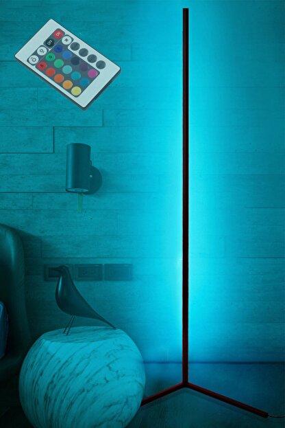 thorqtech Alfonso Metal Dekoratif Minimalist Led Lambader 150x30cm Animasyonlu Kumandalı Renkli Köşe Lambası