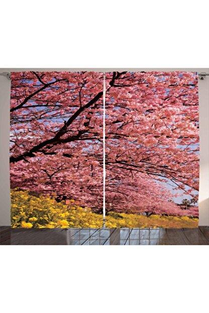 Orange Venue Bahar Perde Sakura Çiçeklerle Kaplı Dallar Fotoğrafı