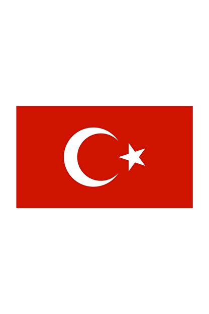 Sticker Fabrikası Türkiye Bayrağı Sticker 9x5,5 Cm 00068