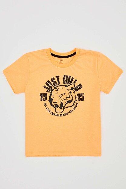 Defacto Erkek Çocuk Kaplan Baskılı Kısa Kol Tişört