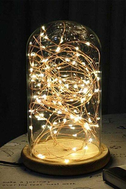CajuArt 10 Metre Pilli Peri Led Işık Dekoratif Tel Led Aydınlatma