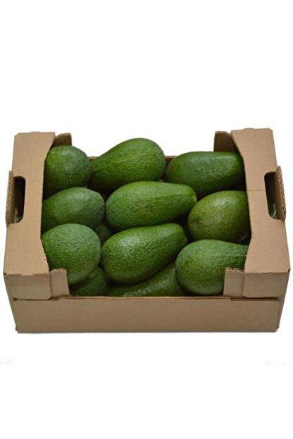 Doğal Burda Avakado Bahçemiz Avokado Bahçemizden 5'li Fırsat Paketi