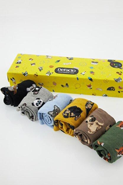 Defacto Erkek Çocuk Kutulu Pug Desenli 6'lı Soket Çorap