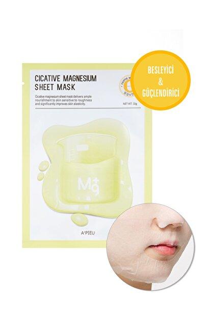 Missha Hassas Ciltler İçin Besleyici Magnezyum Özel Bakım Maske Cicative Magnesium Sheet Mask