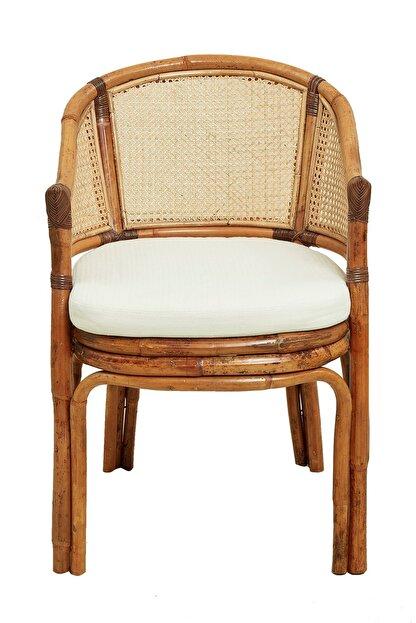 Yargıcı Renkli Sandalye (58X63X85Cm)